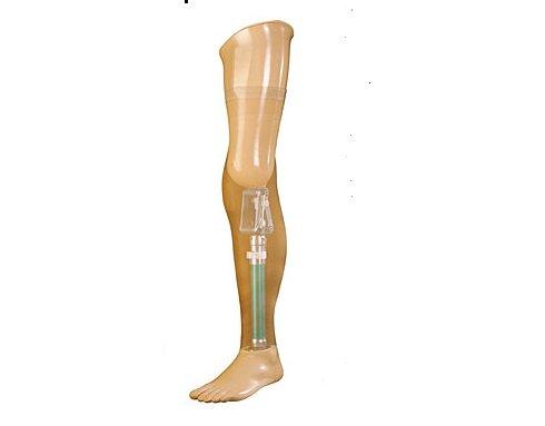 Proteze pri dezartikulaciji u koljenu
